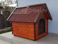 casute din lemn izolate Ciobanesc german Beauceron Cane Corso Dog Argentinian jax l